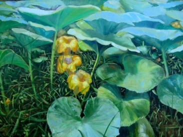 Bundevin cvet (ulje na platnu, 70x100cm)