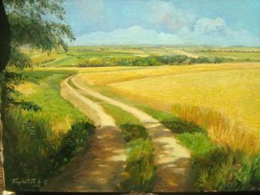 Žitna polja (ulje na platnu, 30x40cm)