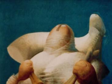 Pastirica (jajčana tempera na platnu, 65x54cm) 1995.