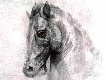 Glava konja (olovka na plastici, 40x30cm)