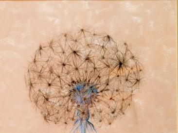 Ružičasti maslačak (digitalna štampa na ogledalu, 120x80cm, 2013.god.)